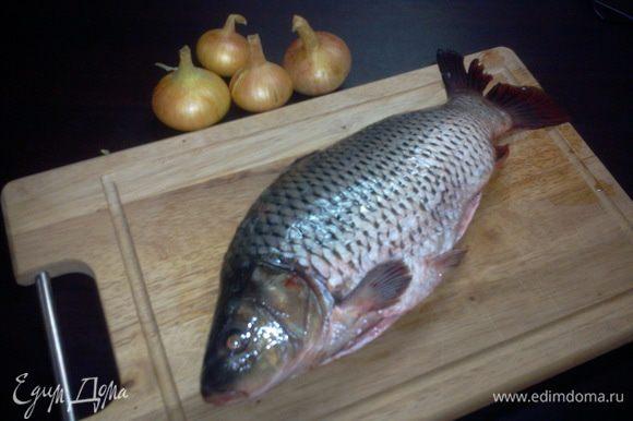 Почистить рыбу и лук