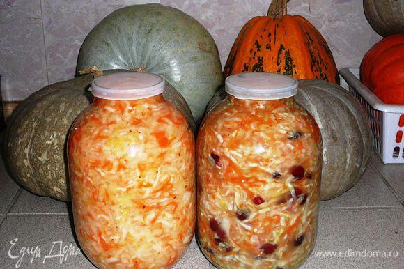 Когда капуста перестанет пениться, выкладываю ее в 3-х литровые баллоны и храню в холодном месте. При подаче можно добавить репчатый лук, бруснику, клюкву, яблоко... Полить растительным маслом...