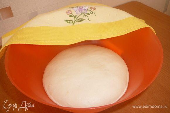 Соединить просеянную муку, дрожжи, сахар и соль. Вести молоко и яйца. Замесить тесто. В последнюю очередь добавить растопленное сливочное масло. Накрыть полотенцем и поставить теплое место на 1 час. Тесто должно увеличиться в 2 раза.