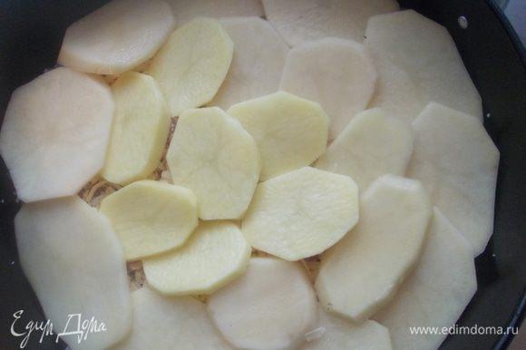 Накрыть сверху кольцами картофеля.