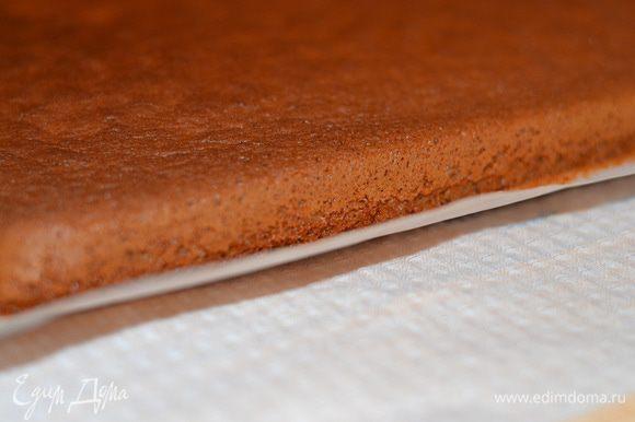Бисквит очень хорошо поднимается.С пергаментом бисквит положить на полотенце.