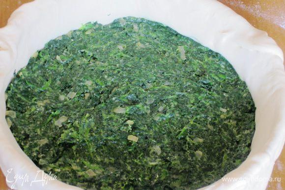Выложить начинку из шпината на тесто и разровнять.