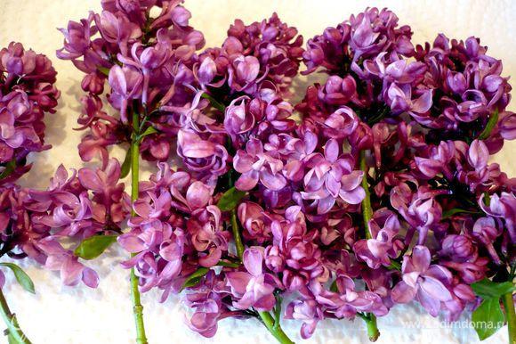Промываем 4 соцветия сирени под проточной водой, аккуратно обсушиваем бумажным полотенцем. Отделяем цветочки от веточек.