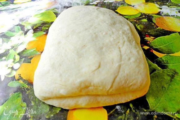 Разворачиваем тесто на 90 градусов и еще раз складываем вдвое.Выкладываем тесто на рабочую поверхность, посыпанную мукой, накрываем полотенцем и оставляем на 5-10 минут. Из этого количества теста можно сделать 2 больших фокаччи или несколько маленьких. Я разделила тесто на 2 части, одну убрала в холодильник (тесто прекрасно хранится в холодильнике 1-2 дня), а из второй сформировала 2 фокаччи.
