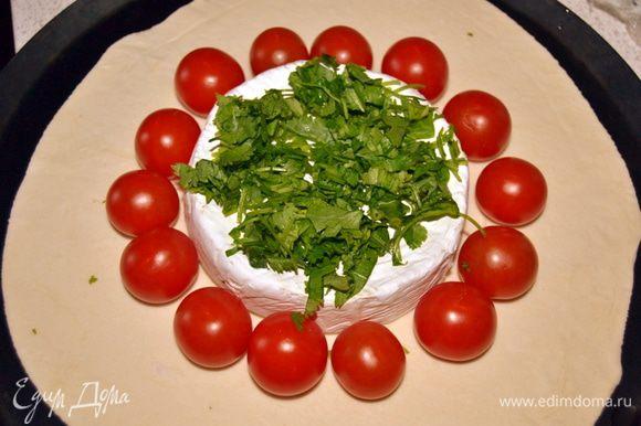 На сыр выложить измельченную зелень.(у меня кинза)