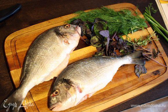 Сначала нужно подготовить рыбу. Моем,разрезаем брюхо аккуратно и достаем внутренности,промываем внутри,счищаем чешую. Отрезаем все плавники,оставляем только спинной (и хвост для красоты)))). Обсушиваем и натираем изнутри солью и перцем. Подготавливаем зелень,моем,сушим.