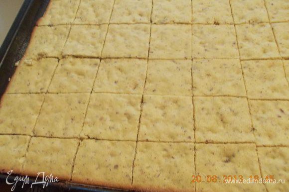 горячий пласт разрезаем на квадратики и оставляем, чтобы печенье остыло, можно, конечно, сахарной пудрой для красоты посыпать, но мне показалось, что и без неё сладко.