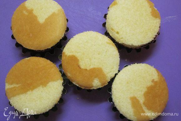 Уложить кружочки бисквита на слой творога, поставить в холодильник.
