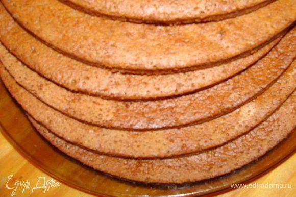 Испечь 6 бисквитных коржей любимым способом или использовать готовые. (шоколадные, светлые или ореховые).
