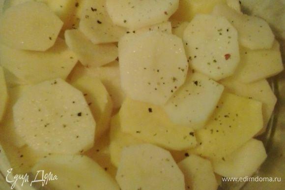 Дно стеклянной формы слегка смазываем масло. На дно формы выкладываем картофель, нарезанный кружочками, слегка солим и перчим.