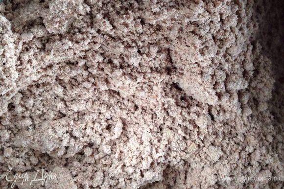 В размягченное сливочное масло просеять муку,какао,добавить орехи и ванильный сахар.Все растереть руками в мелкую кромку.