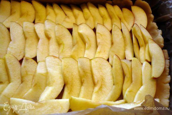 Тесто выкладываем в форму, образуя небольшие бортики. Яблоки выкладываем рядами, сверху кусочками выкладываем масло.