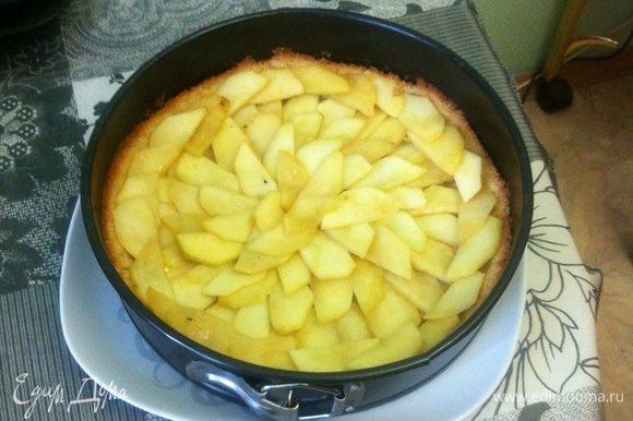 Начинка. Яблоки очистить и нарезать дольками. Сбрызнуть их лимонным соком. Тушить в сковроде на небольшом количестве масла до мягкости. Выложить теплые яблоки в полуготовую основу в форме.