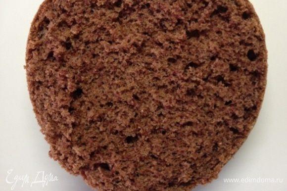 Сверху кладем половину бисквита. Бисквит пропитываем смесью коньяка и воды (1:1), можно взять другую пропитку, особенно, если будут кушать дети.