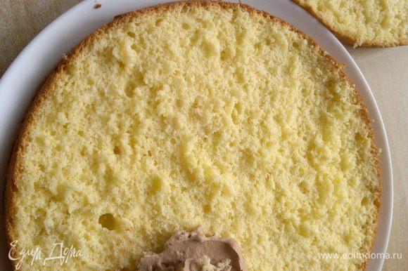 Подготовила бисквит разрезав его пополам вдоль. Крем равномерно наношу на нижний корж.