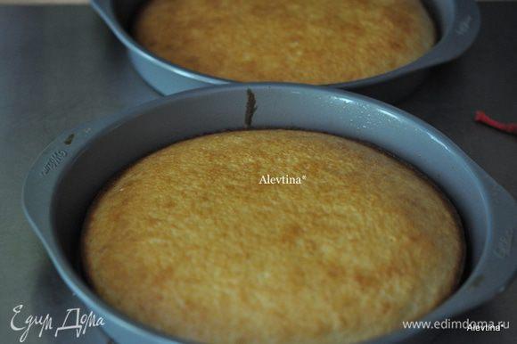 Разделить тесто на 2 формы, распределить и поставить в духовку на 50 мин. или до золотистого цвета.