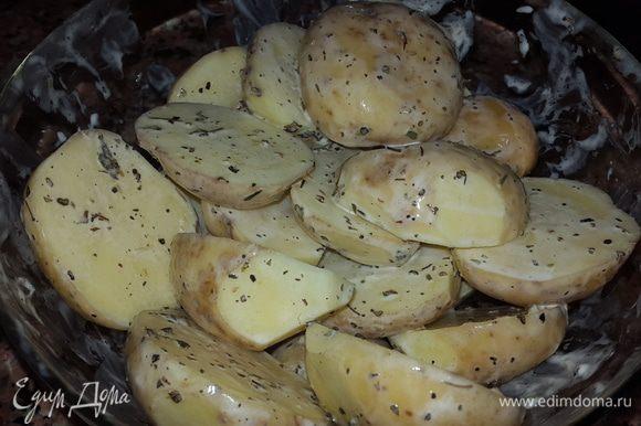 Некрупный картофель моем, обсушиваем, разрезаем вдоль на 2 части и выкладываем в миску. Солим, перчим, добавляем травы, оливковое масло, майонез и тщательно обмазываем каждую дольку.