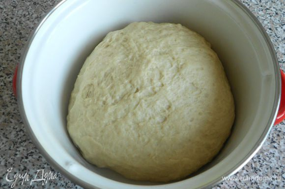 Переложить тесто в просторную эмалированную кастрюлю, накрыть полотенцем