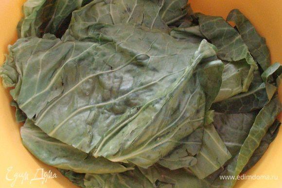 Листья капусты помыть и отправить в микроволновку на 1 минуту, или ошпарить кипятком.
