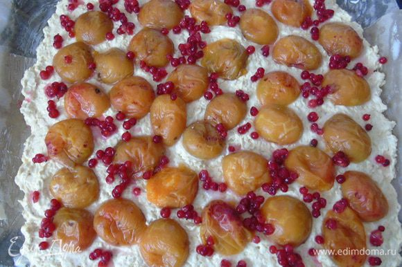 Сверху распределите абрикосы и смородину.