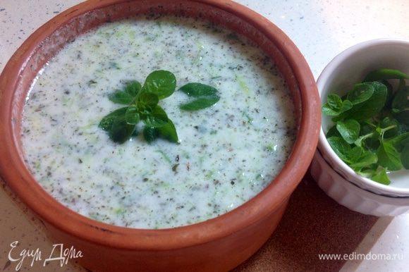 Подавайте джаджик холодным. Приятного аппетита! ** Этот салат будет еще вкуснее, если его приготовить заранее и выдержать в холодильнике несколько часов.