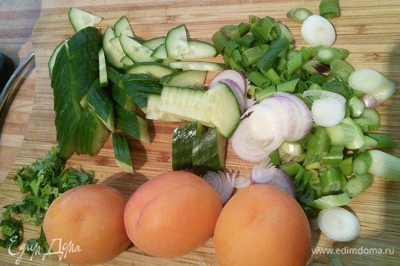 Зеленый лук нарезать кольцами, огурец нарезать тонкими четверть кольцами, абрикосы также нарезать на тонкие скидки. Порубить петрушку и мяту.