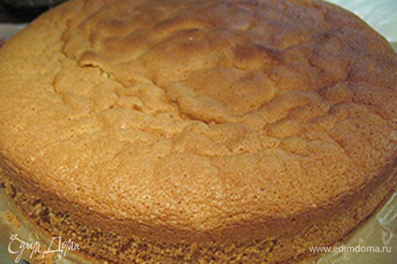 """Бисквит: Разъёмную форму (16) для выпечки застелем пергаментом, маслом не смазываем. Яйца соединяем с сахаром и слегка взбиваем. Ставим миску с слегка взбитой яичной массой на паровую баню и, помешивая, доводим до 45 градусов. Снимаем с паровой бани и взбиваем до густой светлой массы оставляющей след от """"восьмёрки"""" на поверхности. Просеиваем муку и крахмал, добавляем щепотку соли и перемешиваем. Мучную смесь аккуратно вводим в яичную смесь, перемешиваем движениями снизу вверх. Тесто получается тягучим и плотным. Тесто выложить в форму и разровнять. Выпекать бисквит в разогретой до 170 градусов духовке 25 минут до сухой зубочистки. Приоткрыть дверцу духовки и оставить бисквит в духовке еще на 5 минут. Готовый бисквит вынуть из формы и остудить на решетке. Бисквит должен хорошо остыть."""