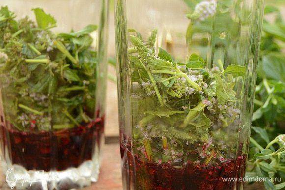 Растолочь черную смородину с сахаром в стакане или в френч-прессе, помять хорошенько мяту, добавить к смородине.