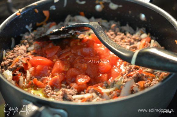 Добавить томаты в собственном соку, нарезанные кубиками, орегано и соль. Готовить, помешивая 30 мин.