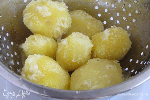 Картофель почистить и отварить в подсоленной воде до полуготовности, примерно 7 минут после закипания. Откинуть на дуршлаг и полностью остудить.