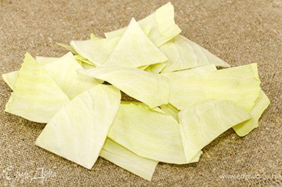 Листья режем на произвольные лоскуты.