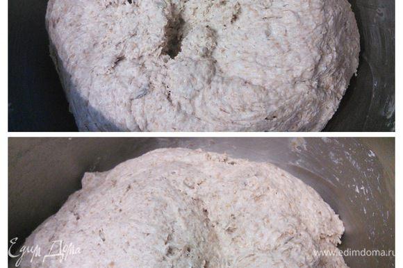 Теперь тесто необходимо два раза обмять и оставить опять на пол часа на отдых. Теперь можно разделить тесто на необходимое количество частей, из них сформировать булочки. Получилось много, но мои булочки вышли слишком маленькими :) В следующий раз обязательно сделаю их крупнее.