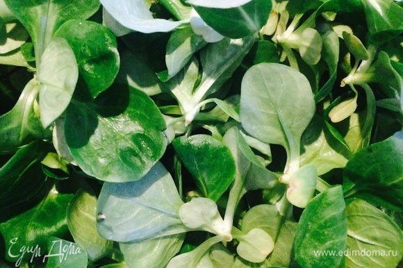 Листья салата хорошо промыть.