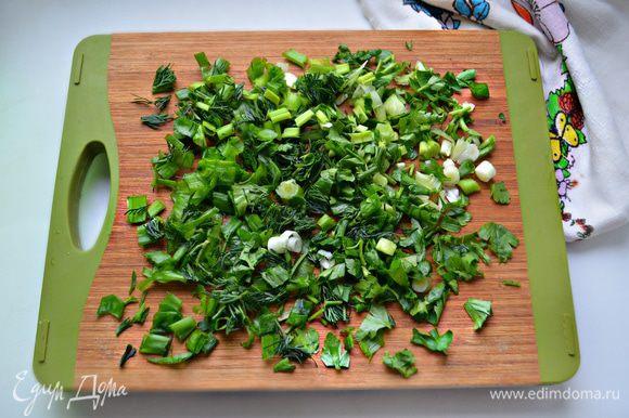 Зелёный лук, петрушку и укроп промойте, просушите бумажным полотенцем и мелко порубите.