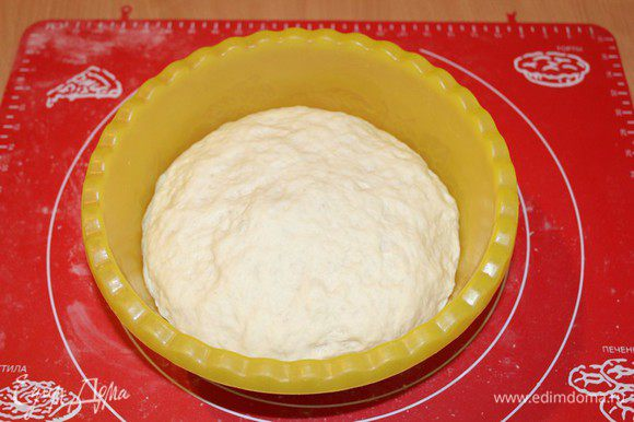 Положить тесто в миску, накрыть пищевой пленкой и поставить в теплое место на час-полтора, чтобы вдвое увеличилось в объеме. Подошедшее тесто обмять и слегка вымесить его на присыпанной мукой рабочей поверхности.