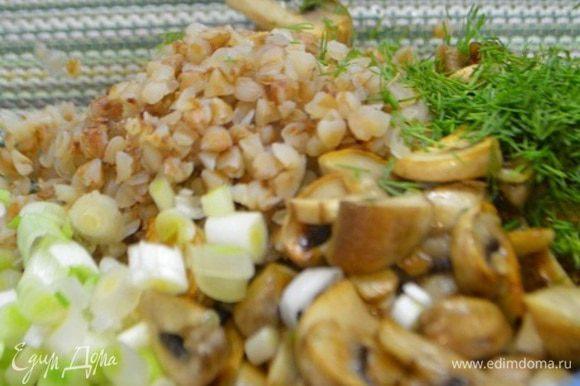 В чашке смешать заранее отварную гречневую крупу, зеленый лук и укроп измельченный, грибы. Все хорошо перемешать. Немного посолить и поперчить.
