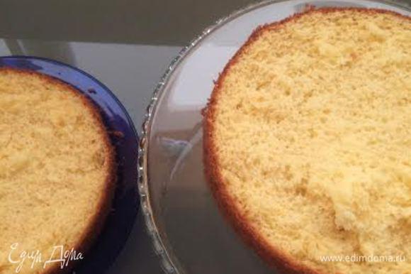 Сборка: бисквит разрезать на 2 части.