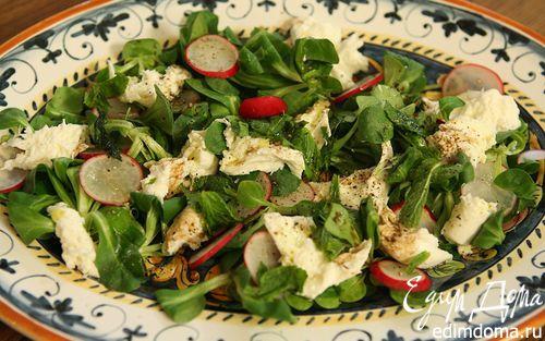 Рецепт Весенний салат с редиской, моцареллой и мятой