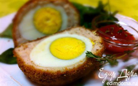 Рецепт Запеченные в духовке шотландские яйца