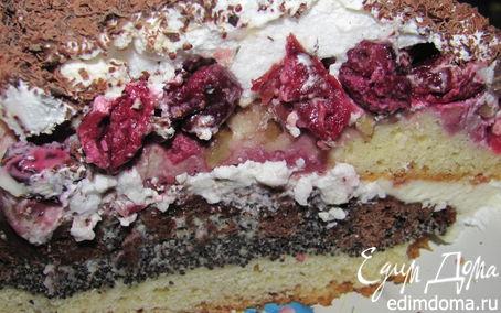 Рецепт Торт маково-ореховый с вишнями