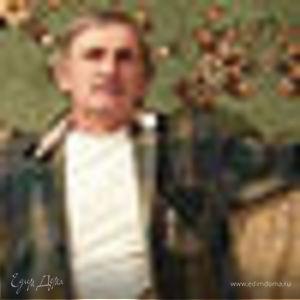 Багир Алиев