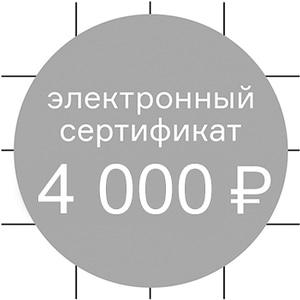 Сертификат в магазин бытовой техники на 4000 руб.