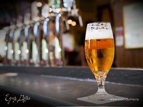 День пива в Исландии