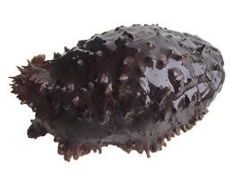 Кукумария варено-мороженая