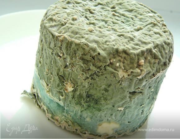 Рецепт сыра дор блю в домашних условиях