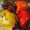 Куриные грудки со сладким перцем в сливочно-горчичном соусе