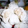 Заварное кокосовое безе