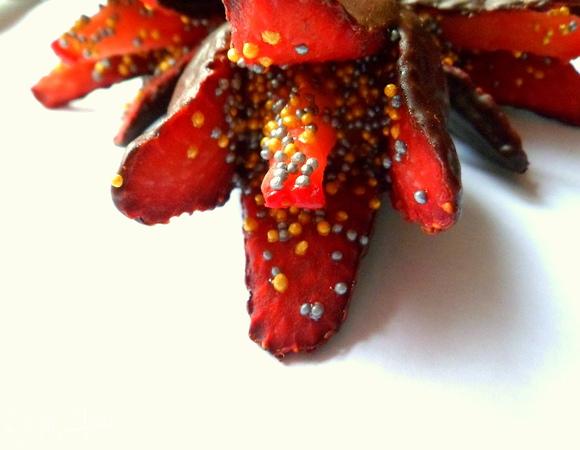 Клубничные цветы, или клубника в шоколаде