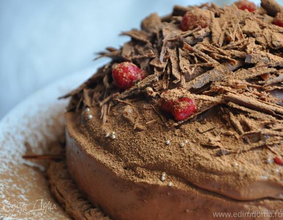 Тыквенно-шоколадный торт-купол с малиновым желе