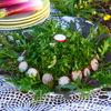 Салат «Пикник»